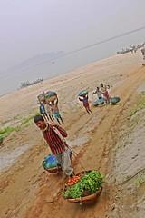 Fresh Vegetables Supply Chain, Assam Style!