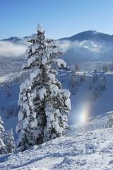 Solitude (hamlux) Tags: snow solitude bluebird sundog
