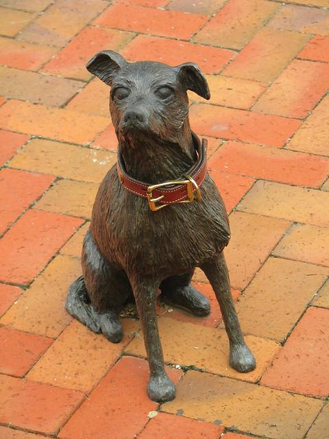 Nora's Dog