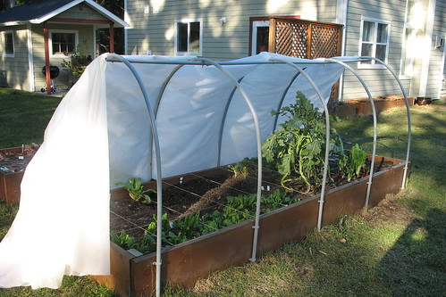 winter garden - hoop house