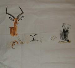 wip safari collection - 25/02/09