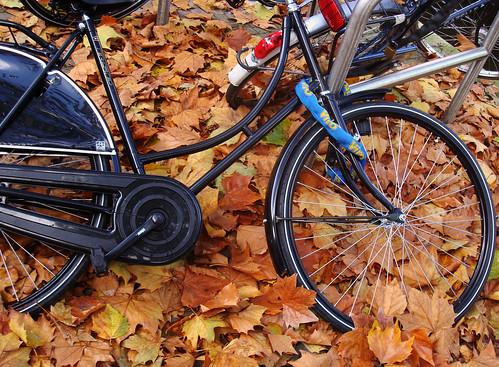Bicicleta no outono em Amsterdam