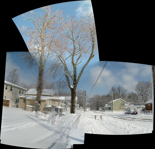 Pano - S6302944 - 5398x5175 - SLIN - Blended Layer
