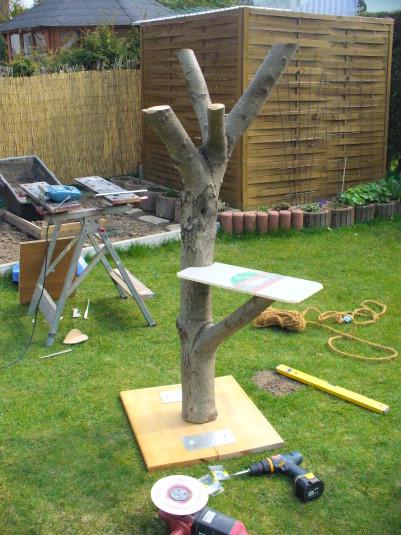 projekt naturkratzbaum für balkon - katzen forum, Gartenarbeit ideen