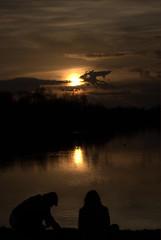 DSC_0097 (Sarahs Photography) Tags: sunset summer plants lake heron water birds geese duck windsor horseshoelake windsorcastle virginiawater