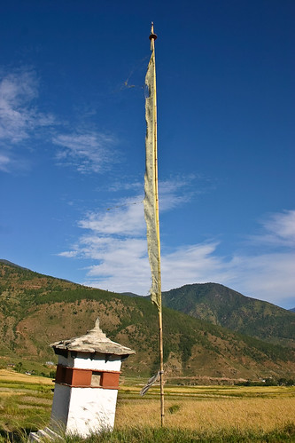 The Paddy fields near Chimi Lhakhang