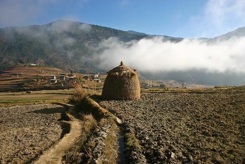 Haystack near Chimi Lhakhang