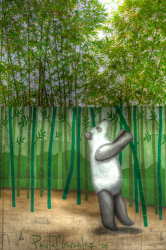 HDR Panda eating bamboo