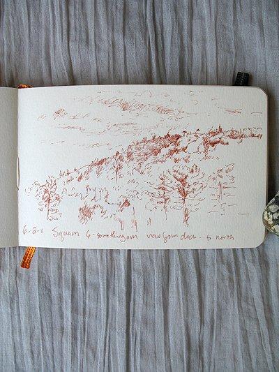 Squam Sketch_1
