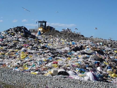 plastic bag landfill