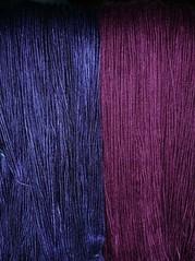merino purples 2