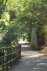 Stones River trail (courtneysmilestoo) Tags: nature murfreesboro