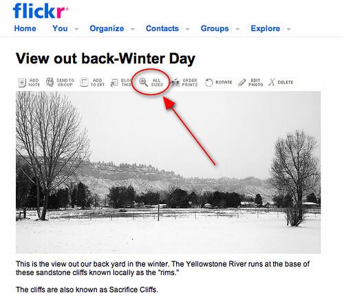 Flickr Sample 1