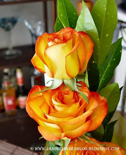 Roses2C