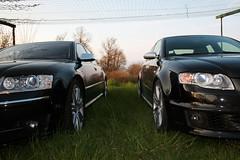 Audi RS4 & Audi S8 (Dolce 69) Tags: audi rs4 s8