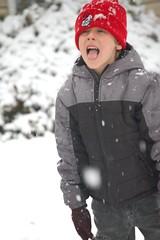 Snow 09 062