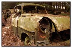 14 (jluk) Tags: rust belgium oldcars mousse rouille oxydation urbex cimetary chatillon vieillevoiture epave abandonnedcars