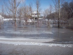 This is probably at least 1-2ft deep... (legallyglinda) Tags: flood 2009 westfargo sheyenneriver