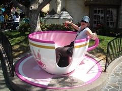 Fake Tea Cup