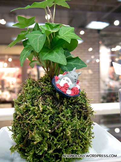 Totoro on a plant