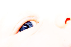 Eye In Eye With A Mad Cow (Prozac74) Tags: blue baby reflection eye mobile closeup cow interestingness explore overexposed highkey fullsize themagazine canonef100mmf28macrousm strobist activeassignmentmonthly canonspeedlite580exii canoneos5dmarkii fullflash prozac09