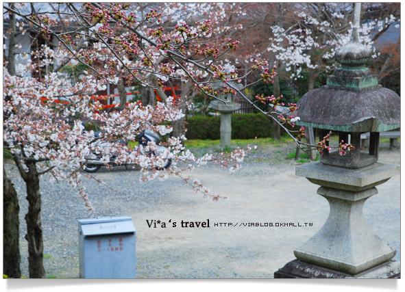 【京都春櫻旅】京都旅遊景點必訪~京都清水寺之美京都清水寺15