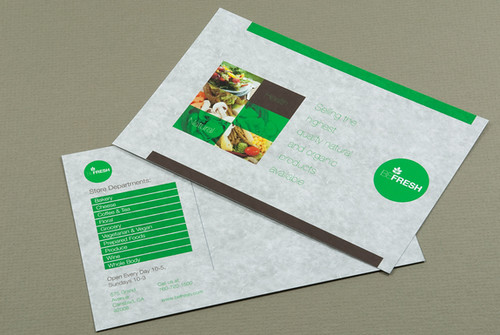 Organic Health Food Market Postcard