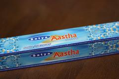 20090427 Shrinivas SATYA Aastha