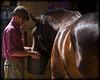 The Shire Horse (strussler) Tags: england horse museum canon eos bay westsussex sigma apo 5d shire heavy stable singleton 70300 wealdanddownland imagepoetry heavyhorseandworkinganimalsshow