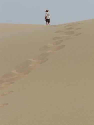 A solitary climber reaches the top of a dune.