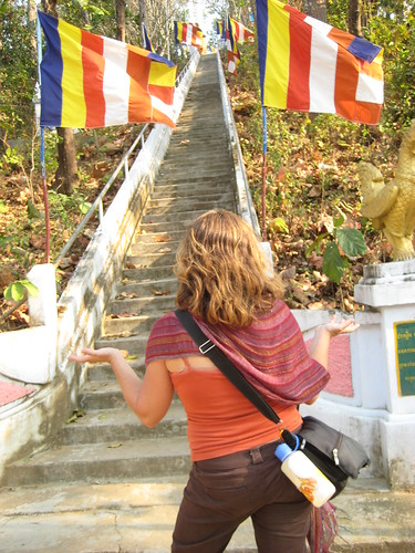 """""""Refuses to climb"""" aka Lboogie unhappy at the towering staircase - Krati, Cambodia"""