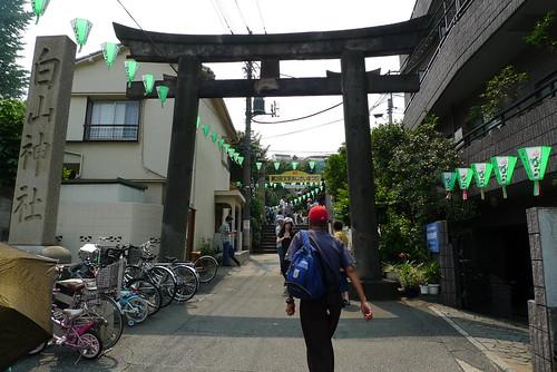 Hakusan shrine's Hydrangea festival