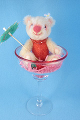 Beary Daiquiri