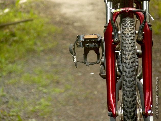 P1020357_bike