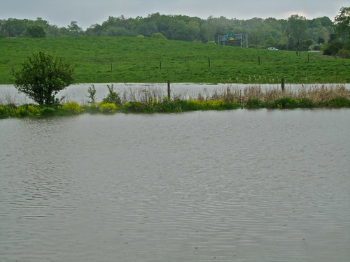 Flooded pond