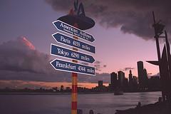 Chicago Skyline from Navy Pier (michael_hamburg69) Tags: usa chicago paris skyline america tokyo frankfurt scanned navypier amerika americanairlines windycity rollfilm milesaway eingescannt analogscan