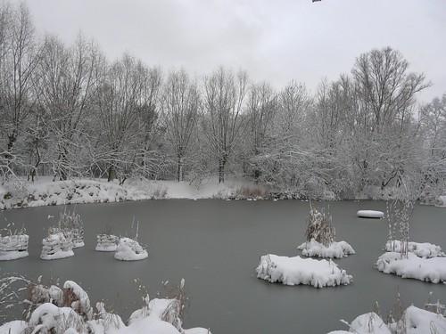 Snow on Globe Pond