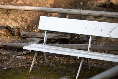 a bench I never saw anybody sitting on
