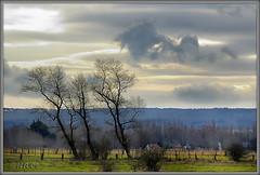 Vers les monts de l'Artois...