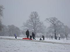 snow day (Jan 2009) - 28
