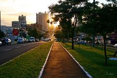 Pr-do-sol na avenida - Sunset at boulevard (Robson Borges) Tags: sunset brazil brasil avenida natureza prdosol avenue pantanal matogrossodosul campograndems robsonborges