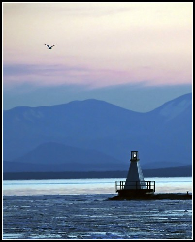 blue light usa lighthouse bird us vermont southern restored lakechamplain breakwater restoraton