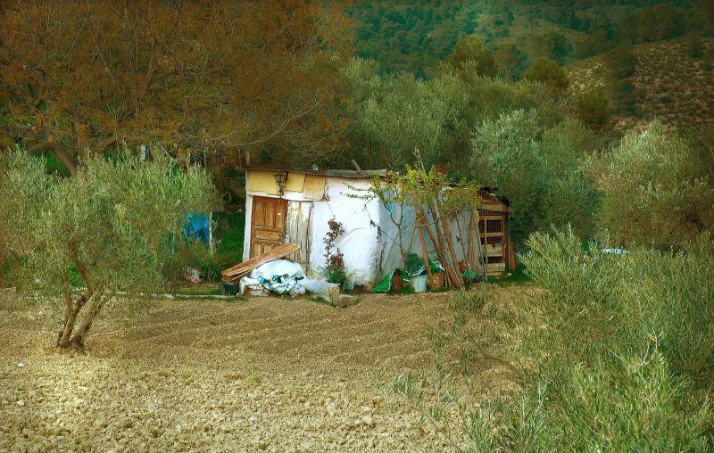La cabaña :las Dehesas de Letur, Albacete.