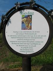 19.04.2009 (hippo1107) Tags: canon is spring powershot saar frhling s5 weinlehrpfad wiltingen canonpowershots5is scharzberg
