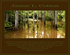 Words from Captain Jean-Luc Picard (**Jamar**) Tags: travel woodlands alabama wetlands wisdom