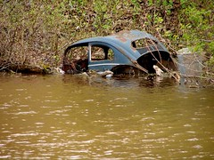 The Marsh holds many Stories (Joseph Hollick) Tags: abandonedcar burlington marsh burlingtonontario wreck oldcar vw vwovalwindow beetle volkswagen volkswagenbeetle vwbeetle vwbug smileonsaturday rust rustybeauty