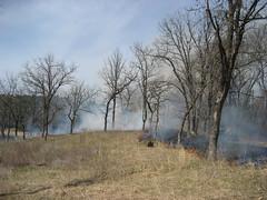 Lower Classroom Savanna Prescribed Burn