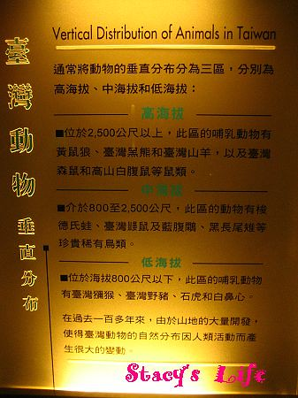 nEO_IMG_博物館三峽 251