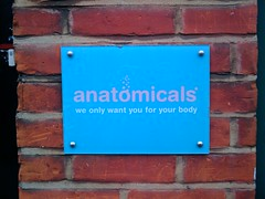 Anatomicals