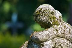 Moss skin (melquiades1898) Tags: sculpture woman green stone germany moss nikon hessen cross skin skulptur kreuz frau stein darmstadt moos alterfriedhof haut d90 oldcemetery grün